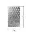 PP 12 płytka perforowana - 100 x 200 mm - ocynkowana ogniowo